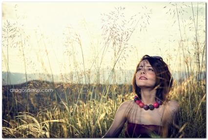 sedinta_foto_dragosdone_07