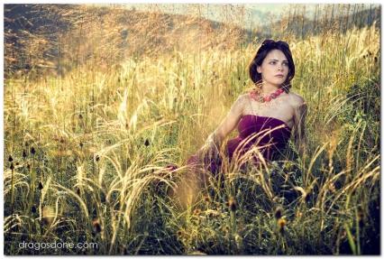 sedinta_foto_dragosdone_08