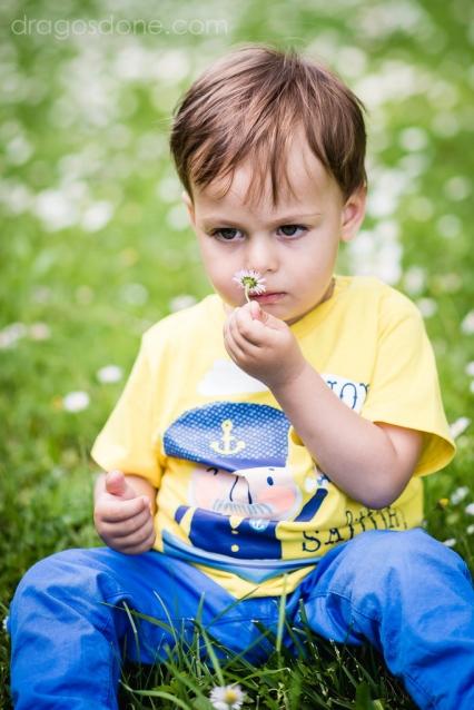 sedinta_foto_familie_022