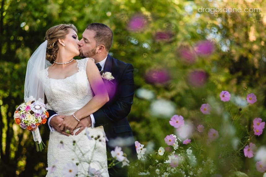 fotograf nunta ploiesti 061b